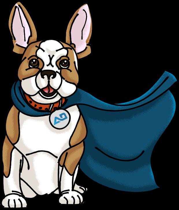 shopify services dog